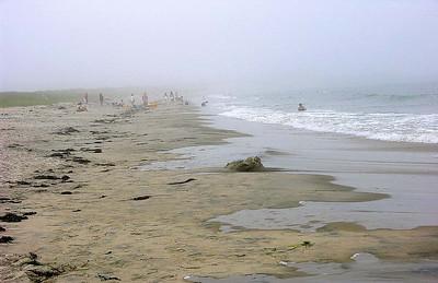 A Foggy Beach