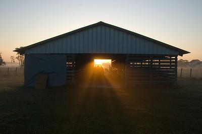 Sunrise in Lithia