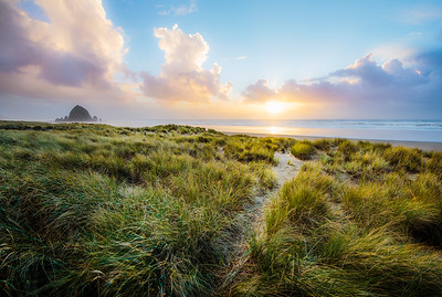 In the Setting Sun - Haystack Rock - Cannon Beach, Oregon