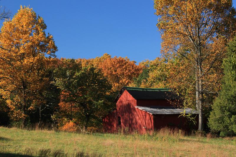Barn in the Autumn