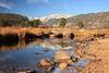 Moraine Park Reflection
