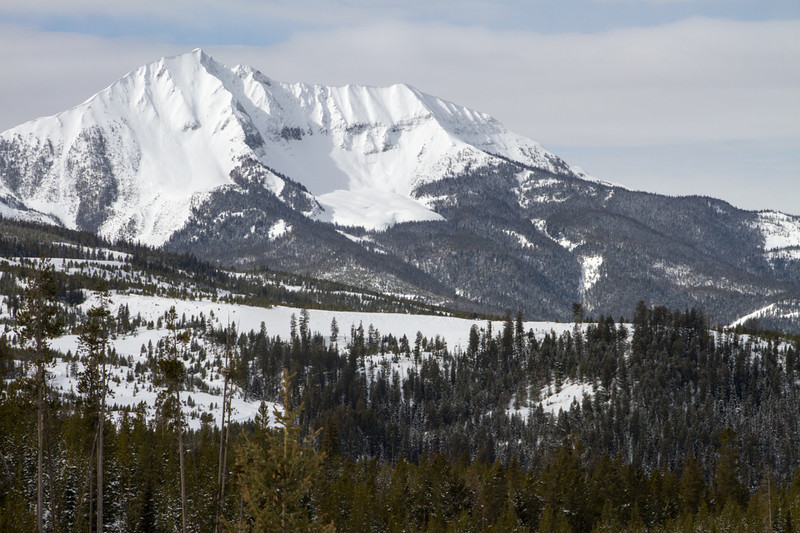 Fan Mountain rises above the forest with a smooth sheet of snow.