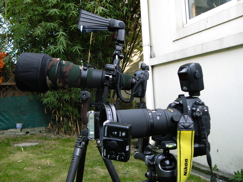 My bird photography and macro photography setup side by side.