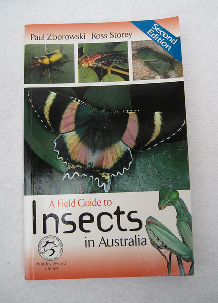 I got this book from Australia to get some basic Insects knowledge. I still cannot find a good book on insects of China and hence a lot of the insect photographs either have not been identified or some of them may not be accurate. However, this books gives a general classification and idea of what insect i was shooting.