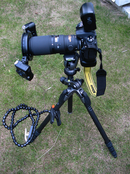 This is my complete setup for macro photography. Again, the flash unit is optional unless absolutely needed - also i like shooting more in natural light and now with the high ISO in D3S it makes it more easy