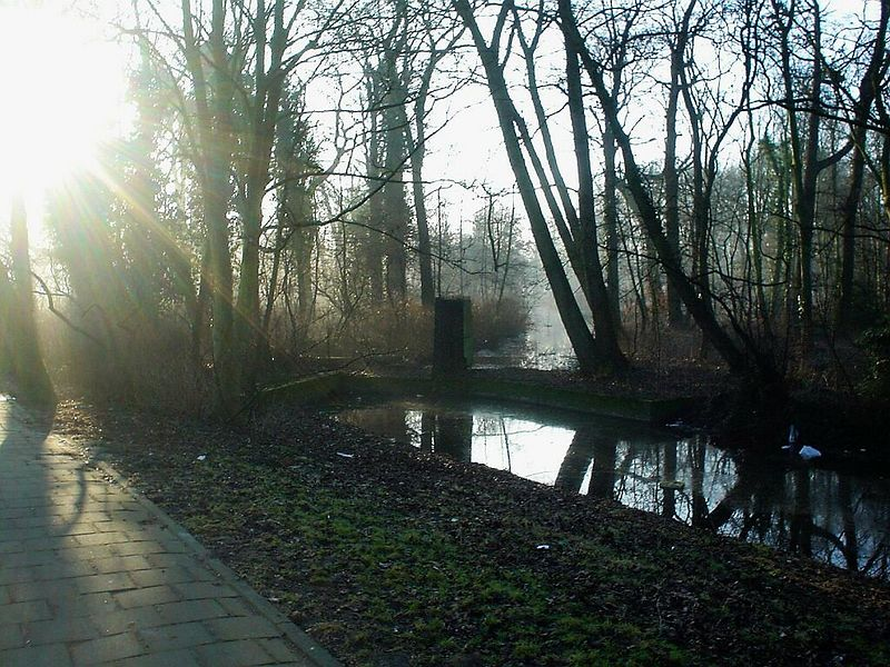 The park of Rijswijk, March 2003<br>It was a beautiful, hazy, sunny morning on my way to work, when I saw this.