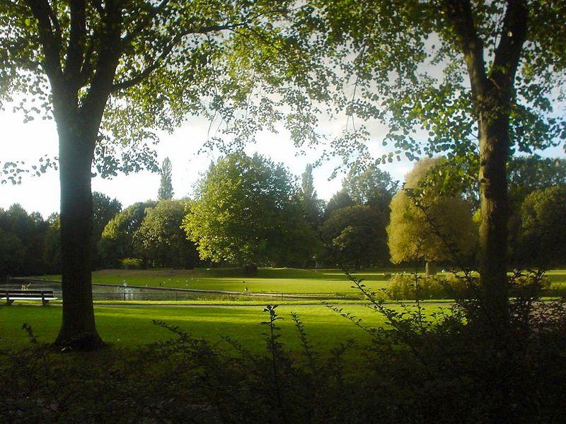 Late summer in the Rijswijkse bos