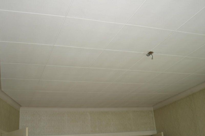 Plafond(tegels) in de voorkamer