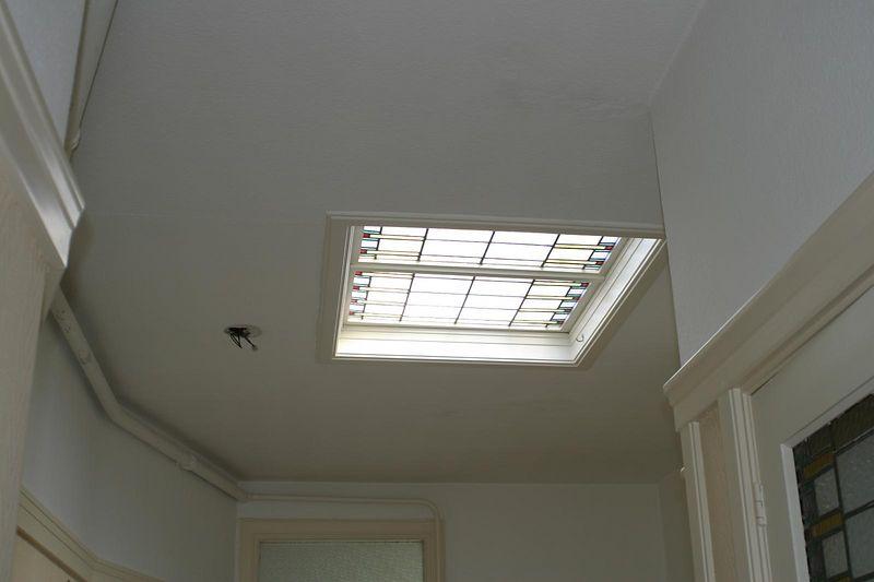 skylight in gang
