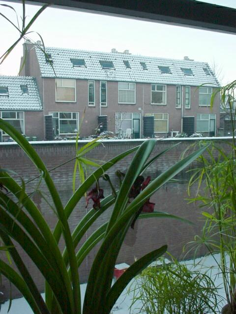 Winter in Groningen, view from my 2nd apt there