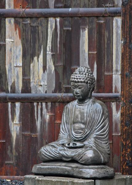 Buddha and fence