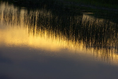 Sunset's reflection. Vista View Park, Davie, Fla., August 2015.