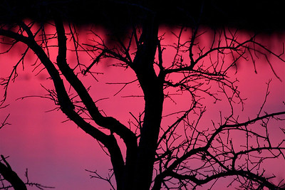 Sunset explosion, Pembroke Pines, Fla., January 2015. #nofilter