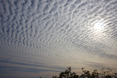 Cloud cover, December 12, 2014. It looked like this most of the day. Very weird and cool