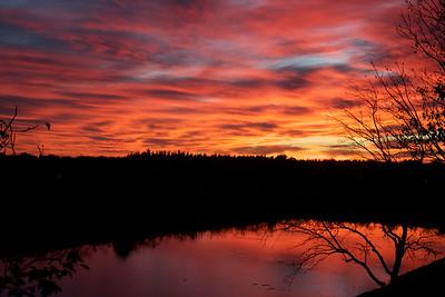 Evening, Pembroke Pines, January 2015.