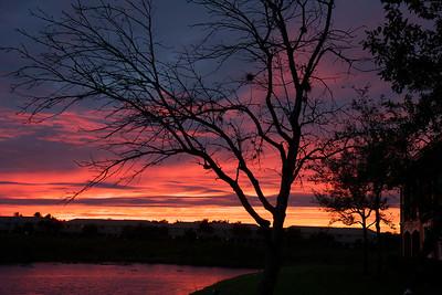 Evening sunset, Pembroke Pines, Fla., Nov. 26, 2014.