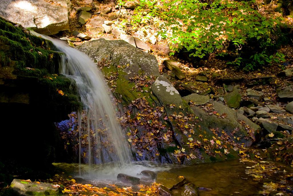 Peeka Moose - Buttermilk Falls Hike