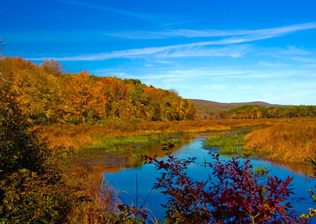 Autumn Landscapes on the Preserve