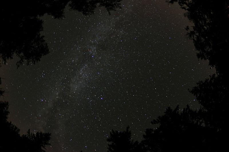 So Many Stars - Shaw Island, Washington - 96 Second exposure