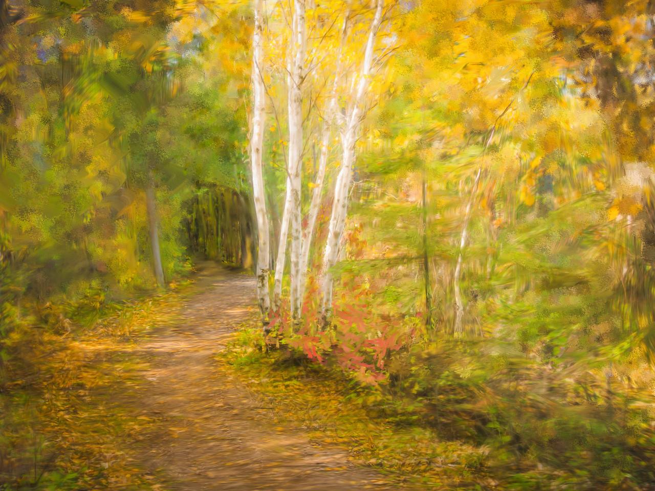 Autumn Walk at Hecla