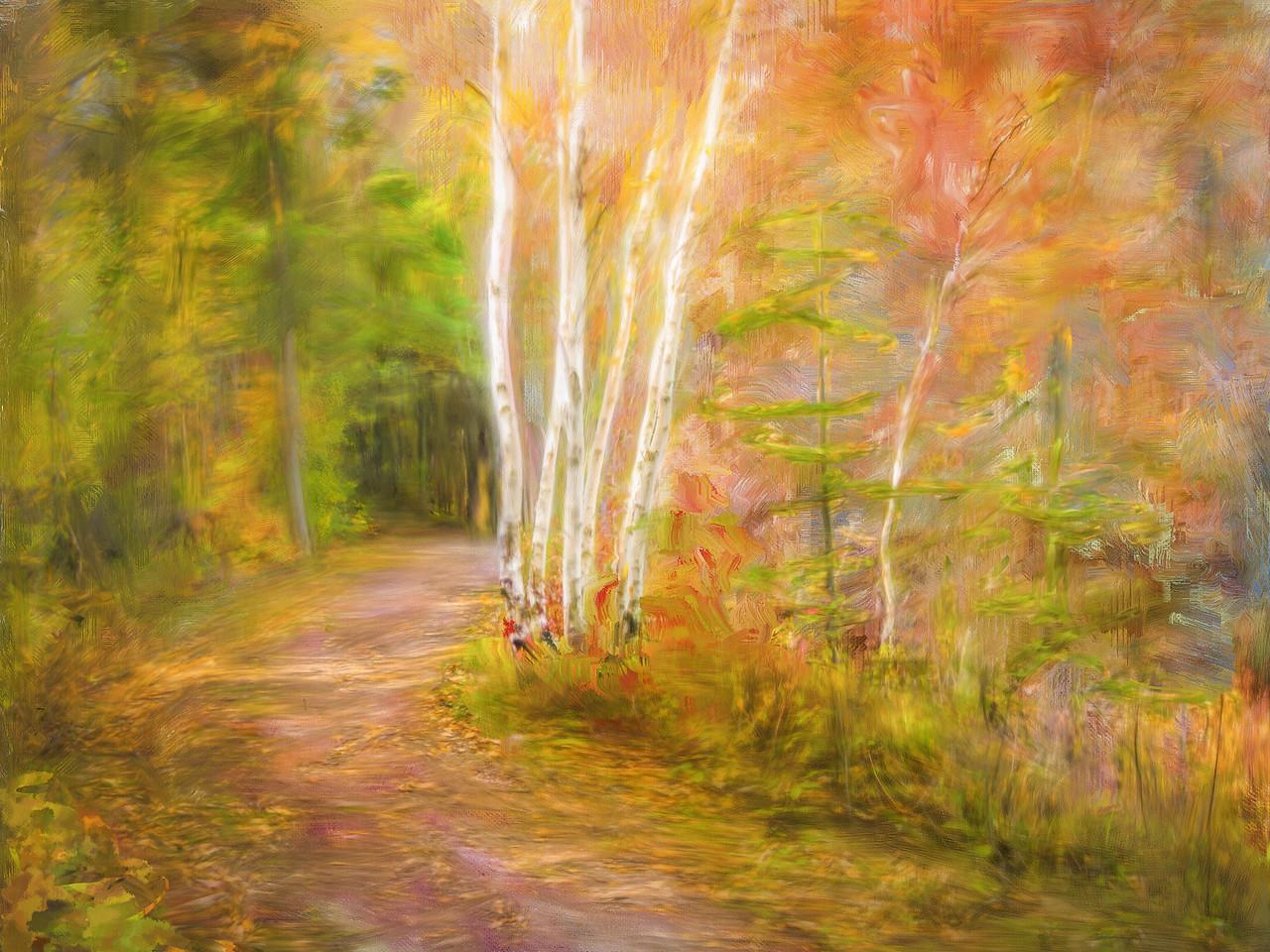 Autumn walking in Helca