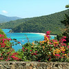 Peter Bay view, St. John, USVI