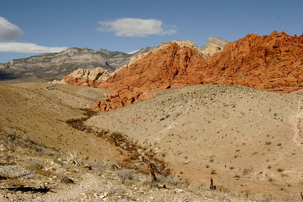 Desert red, green and blue at Red Rock Canyon