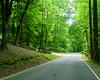 river_road_3-20-03