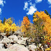 Colorado Fall Colors 2