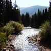 Rocky Mountain Stream in Colorado