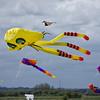 Blyth Kite Festival