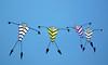 Stick kites