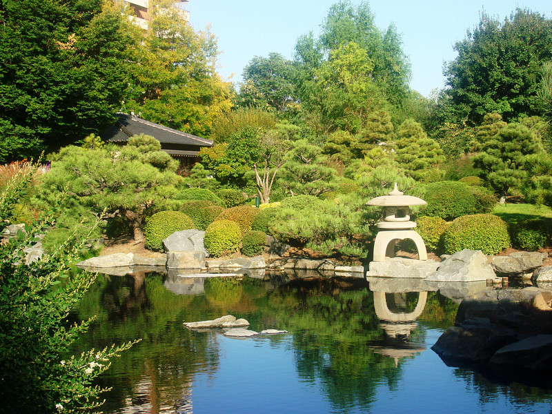 Japanese Garden at Denver Botanical Gardens