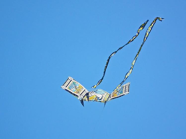 kites Washington 10