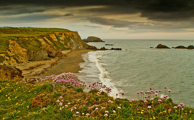 kilfarasy cliffs, waterford,Ireland