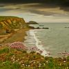 kilfarasy cliffs, waterford,Ireland