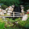 Bridge at Betty Ford's Alpine Garden