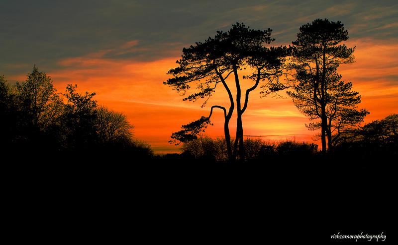 sunset@thepark