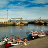 Harbour @ kilmore quay,co.wexford  2011