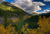 Jasper National Park, Alberta.