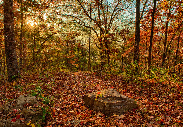 An Arkansas trail in fall.