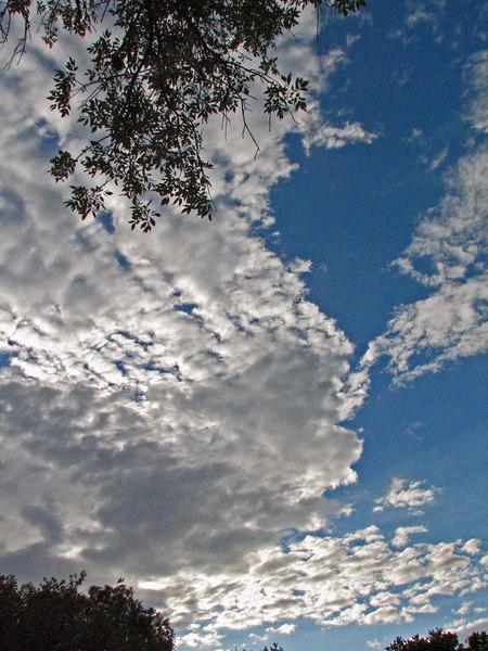 Tanya's clouds