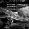 Still life on the edge of Devil Lake near Bend Oregon