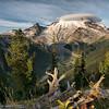Sunrise on Emmons Glacier