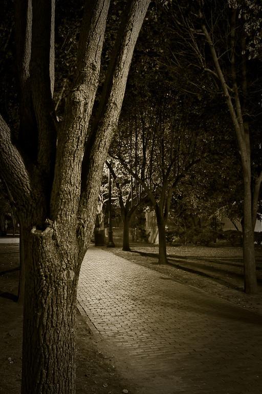 Night Photo - Final Prints