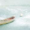 WHITE CANOE<br /> Plum Island Basin<br /> Newburyport, MA edit edit