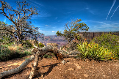 GRAND CANYON hdr1