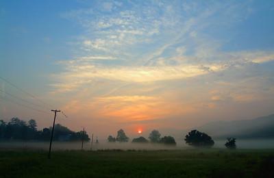GREENSPRING VALLEY MORNING