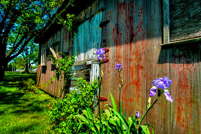 BARN WALL in HDR