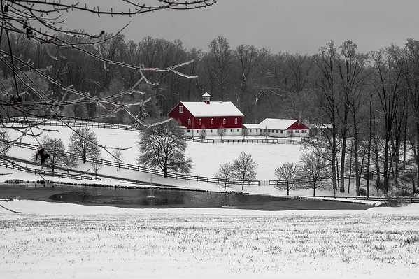 COLWILL FARM IN THE SNOW